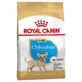 Royal Canin Chihuahua Junior 1.5 kg - Dogteur