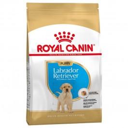 Royal Canin Labrador Junior 12 kg - Dogteur