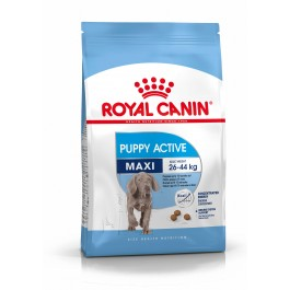 Royal Canin Maxi Junior Active 15 kg - Dogteur