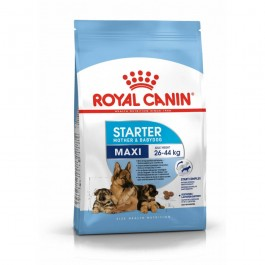 Royal Canin Maxi Starter Mother and Babydog 15 kg - Dogteur