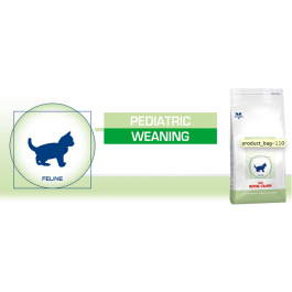 Royal Canin Vet Care Nutrition Cat Pediatric Weaning Chaton 400 grs - Dogteur