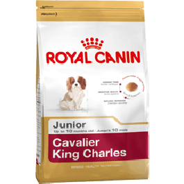 Royal Canin Cavalier King Charles Junior 1.5 kg - Dogteur