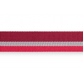 Collier Ruffwear Crag Collar Rouge M - Dogteur