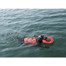 Ruffwear Hydro Plane Aquatique Rouge 30 cm - La compagnie des animaux