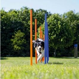 Trixie Slalom Agility - Dogteur