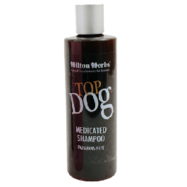 Hilton Herbs Top Dog Medicated Shampoing 250 ml - Dogteur