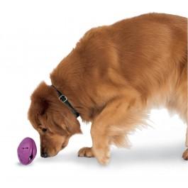 Twist'n Treat PetSafe Jouet d'occupation friandise pour chien taille XS - La Compagnie des Animaux.jpg