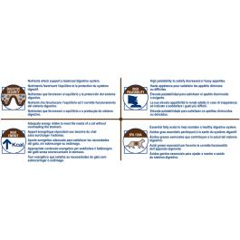 Royal Canin Veterinary Diet Cat Gastro Intestinal GI32 4 kg - Dogteur