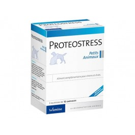 Wamine Proteostress 36 cps - Dogteur