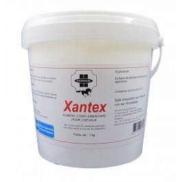 Xantex voies respiratoires du cheval 1 kg - Dogteur