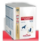 Royal Canin Veterinary Diet Convalescence Support 10 sachets de 50 grs