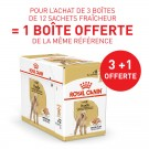 Offre Royal Canin Caniche Adult mousse 36 sachets + 12 offerts