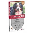 Advantix très grand chien (40 - 60 kg) - 4 pipettes- La Compagnie des Animaux