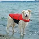 Trixie Gilet de Flottaison pour chien taille M