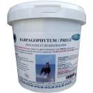 Harpagophytum Prêle Granulés 1 kg