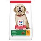 Hill's Science Plan Puppy Large Healthy Development Poulet 16 kg