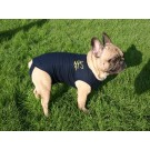 Medical Pet Shirt Chien XXS