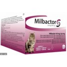 Milbactor Chat plus de 2kg 2 cps