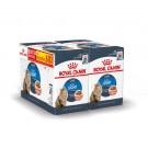 Offre Royal Canin: 1 boite Féline Care Nutrition Ultralight sauce achetée = la deuxième à -60%