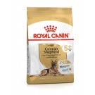 Royal Canin Berger Allemand Adult 5+ 3 kg