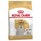 Royal Canin Bichon Maltais Adult 1.5 kg
