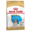 Royal Canin Cavalier King Charles Junior 1.5 kg