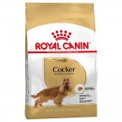 Royal Canin Cocker Adult 12 kg