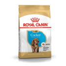 Royal Canin Cocker Junior 3 kg