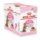 Royal Canin Kitten Sterilised 12 x 85 grs - La Compagnie des Animaux