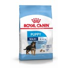 Royal Canin Maxi Puppy - La Compagnie des Animaux