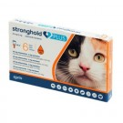Stronghold Plus - dogteur.com
