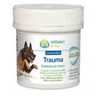 Trauma pour chien 70 g- La Compagnie des Animaux -