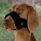 Trixie muselière sangle nylon avec doublure souple pour chien L- La Compagnie des Animaux