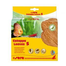 Sera Catappa Leaves Feuilles de badamier S