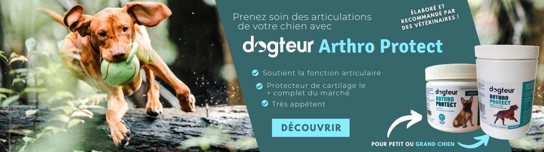 Dogteur Arthro Protect : le protecteur du cartilage le plus complet du marché