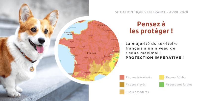 Printemps 2020 : Situation des tiques en France