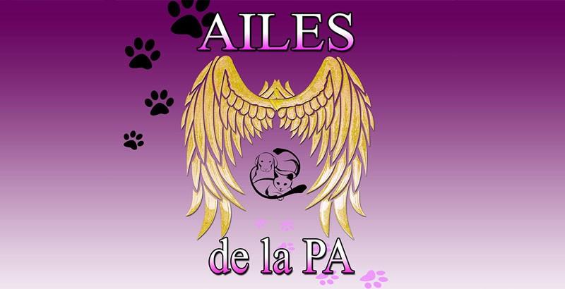 Interview : Les Ailes de la PA
