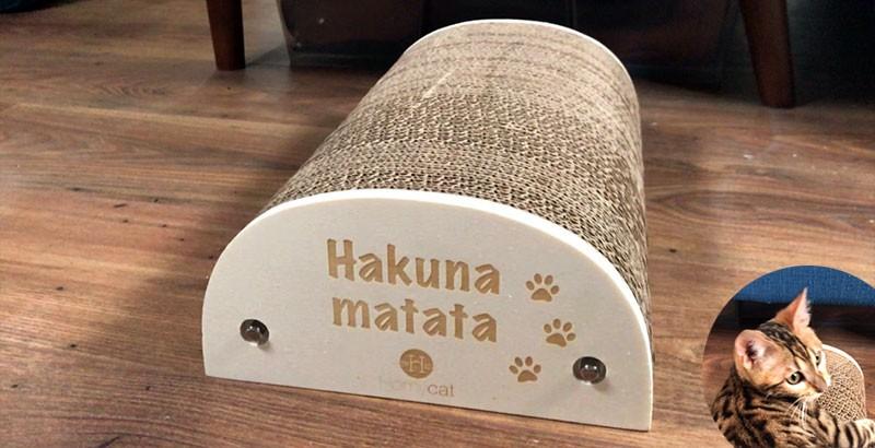 On a testé : Le griffoir Hakuna Matata Homycat