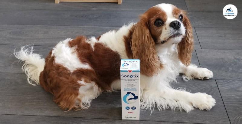 Izzy a testé le produit Sonotix