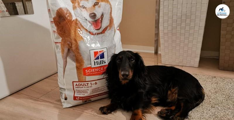 Nachos a testé les croquettes Hill's Science Plan No Grain pour chien