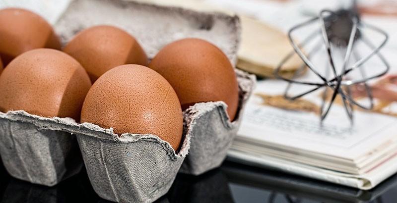 Comment lire un œuf ?
