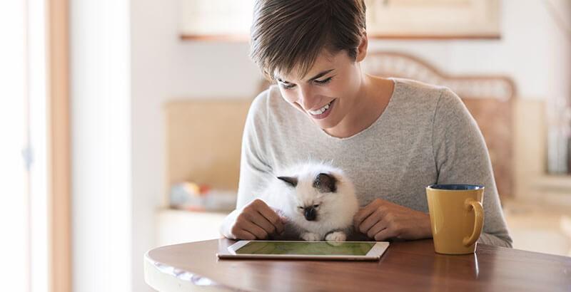 Comment bien communiquer avec son chat ?