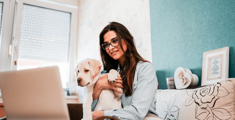 Pourquoi assurer votre animal chez DogteurAssur ?
