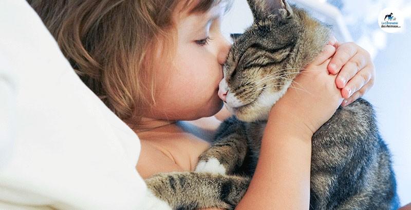 Enfants, chiens et chats, quels dangers ?