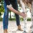 Les suros chez le cheval : Comment prévenir et soigner ?