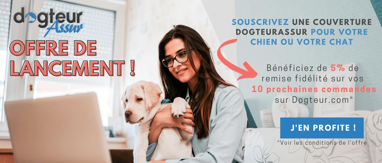 DogteurAssur